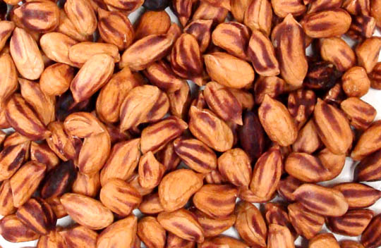 Jungle Peanuts, Raw Power (8 oz, Premium)