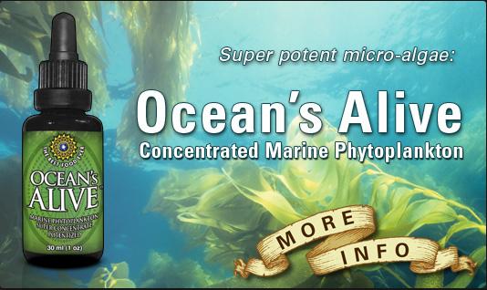 Ocean's Alive Marine Phytoplankton, 30 ml (1 oz)