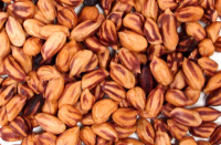 Click to enlarge Jungle Peanuts, Raw Power (5 lbs BULK, Premium Raw)